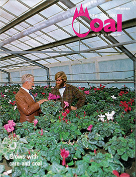 Van Lier Nurseries featured on New Zealand Coal Magazine 1981